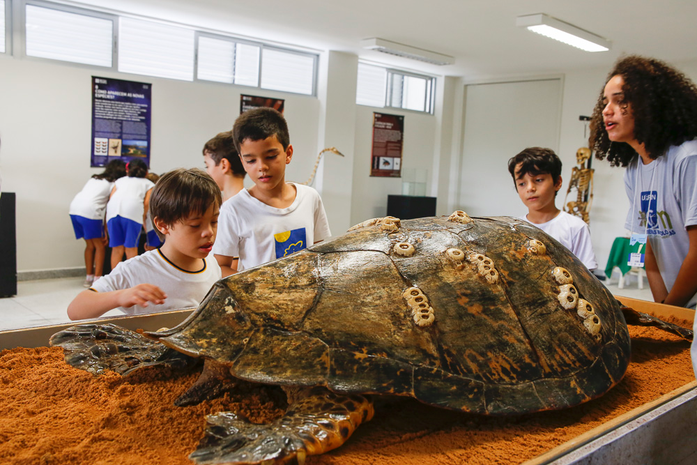 Dois museus do RN são considerados melhores da América Latina