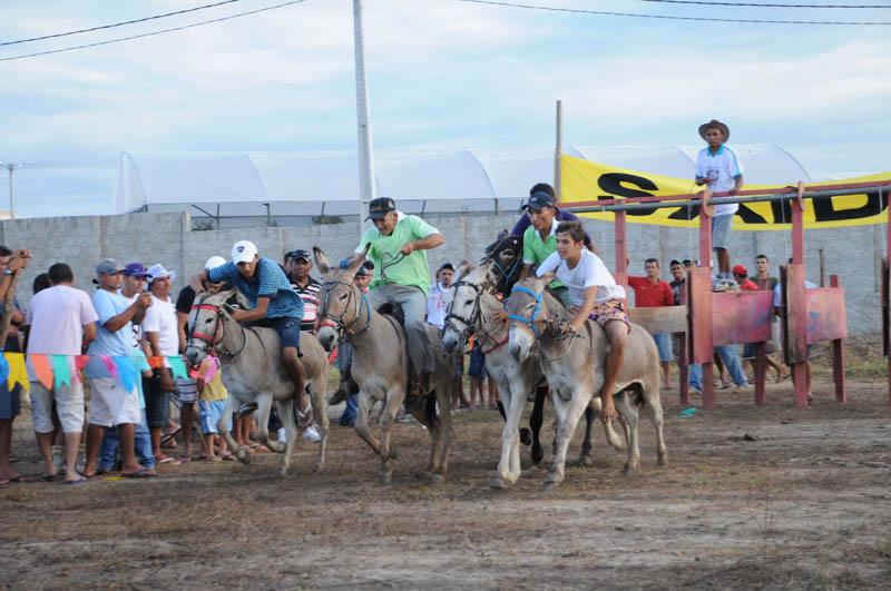 Incrível corrida de jegue em Timbaúba dos Batistas