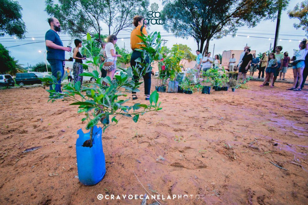 Eco Praça continua seu projeto de sustentabilidade na Praia de Pipa