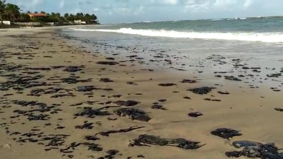 Você tem até quarta para ser voluntário para limpeza de óleo da praia