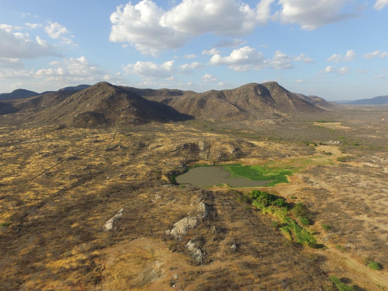 55 km² da Caatinga do Seridó foi destruído em 30 anos